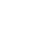 CHLORINE DEFENCE SYSTEM Patented